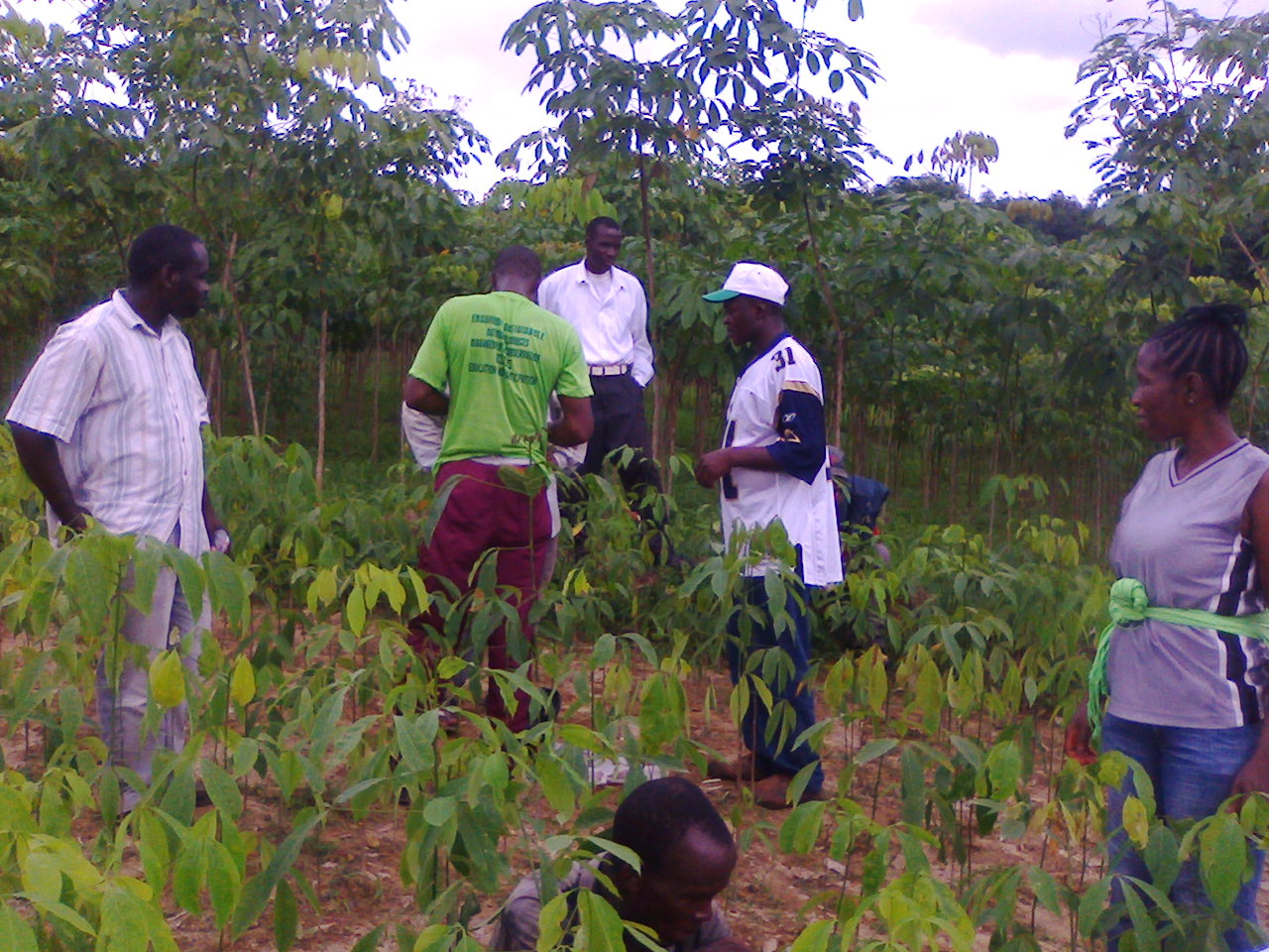 18 students of the Agriculture Department at the Nimba Commuinty College get practical knowledge about agriculture during a field trip to a rubber plantation in Nimba County